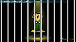 What Is Habeas Corpus? - Definition, History, Amendment & Example preview