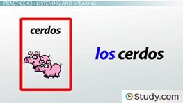 Matching Articles and Nouns: Spanish Language Practice