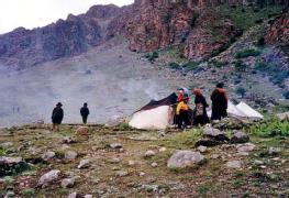 Foraging & Pastoral Nomadic Societies: Definition & Characteristics