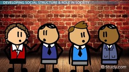 What Is Social Structure of Society? - Definition & Theory