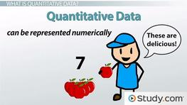 What is Quantitative Data? - Definition & Examples