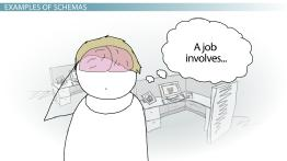 Schemas in Psychology: Definition, Types & Examples on