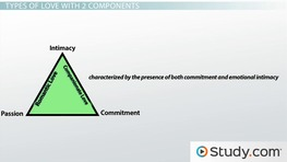 Sternberg's Triangular Theory of Love: Definition, Examples & Predictions