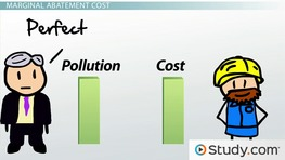 The Economics of Pollution: Marginal Cost of Pollution & Optimum Amount of Pollution