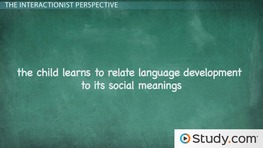 The Effects of Environment and Culture on Language Development