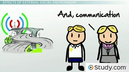 How The Social Environment Affects Business: Examples & Impact