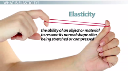Elasticity of Solids: Physics Lab