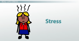 What Is a Psychological Stressor? - Definition & Examples