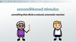 Unconditioned Stimulus: Examples & Definition