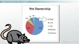 What is a Pie Chart? - Definition & Examples