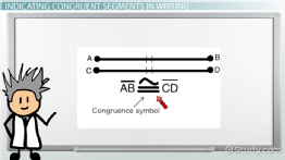 Congruent Segments: Definition & Examples