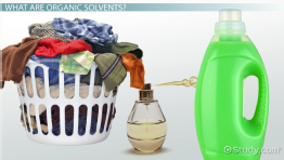 Organic Solvent: Definition & List