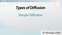 Simple Diffusion: Definition & Examples