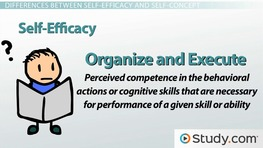 Self-Efficacy vs. Self-Concept: Differences & Effects on Outcome Expectations