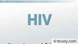 Sexually Transmitted Infections: Types, Transmission, Symptoms & Treatments