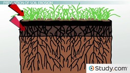 Weathering erosion wasting videos lessons for Meaning of soil resources