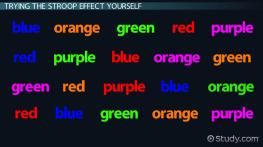 The Stroop Effect in Psychology: Definition, Test & Experiment
