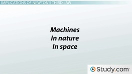 Newton's Third Law of Motion: Examples of the Relationship Between Two Forces