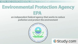 What is an Environmental Impact Statement? - Definition, Requirements & Example