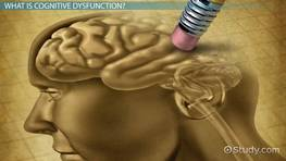 What is Cognitive Dysfunction? - Causes, Symptoms & Treatment