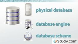 What is a Database Management System? - Purpose and Function