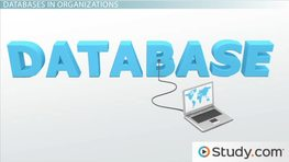 What is a Distributed Database? - Architecture, Principles & Advantages