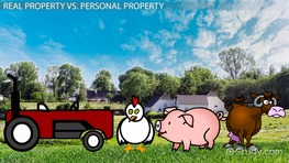 Real Estate vs. Real Property: Differences & Terms
