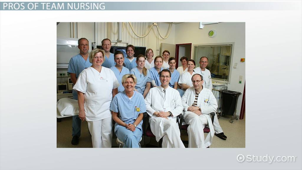 team nursing model  definition  pros  cons  u0026 examples