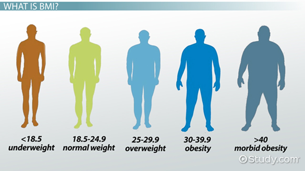 What is BMI? - Definition, Formula & Calculation - Video & Lesson ...