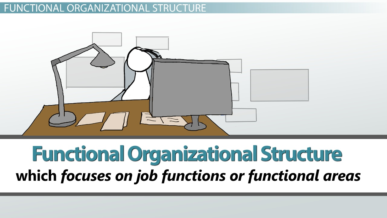 How do I define organizing as a function of management?