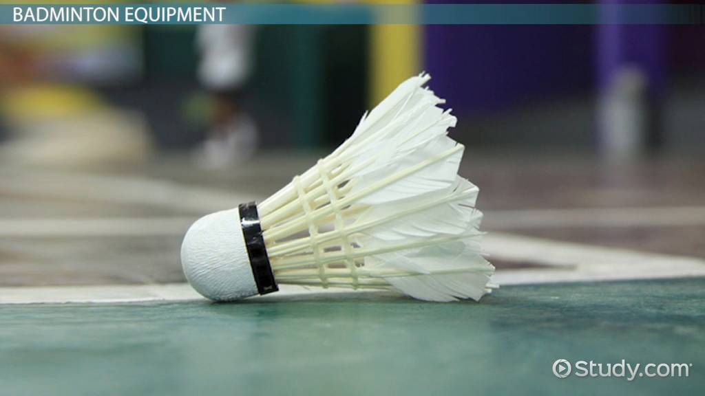 Badminton Rules Amp Equipment Video Amp Lesson Transcript